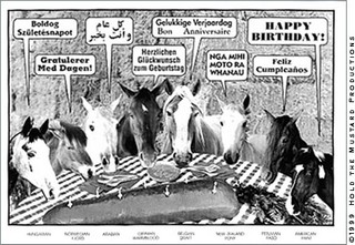 Happy b-day horses