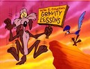 Wile_e_coyote_gravity_lesson